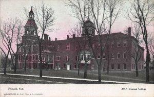 Normal College, Freemont, Nebraska, Early Postcard, Unused