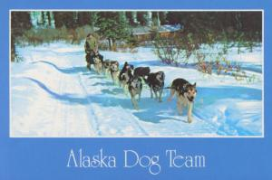 Dog Team Sled Alaska AK Unused Vintage Postcard D10a