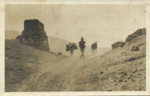 mexico, Native Man on the Road with Donkeys (1930) RPPC Postcard