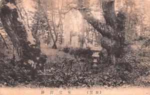 In the Trees Japan Unused