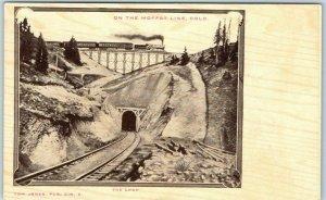 Georgetown, Colorado MOFFAT LINE RAILROAD Postcard THE LOOP Tom Jones c1900s