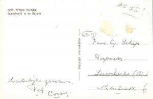 dutch new guinea, BALIEM, Native Papua Chief, Bow and Arrow, Koteka (1950s) RPPC