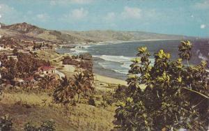Bathsheba Coast , St Joseph , Barbados , 40-60s