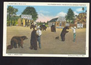 GLORIETA PASS NEW MEXICO OLD PIGEON RANCH FEEDING BEARS VINTAGE POSTCARD