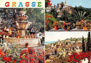 France Cote d'Azur Grasse Cite des Fleurs, Capitale des Parfums Flowers