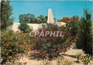 Postcard Modern Tunisia Skanes club residence