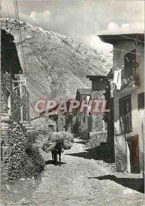 Postcard Modern Valls Andorra Andorra Canillo Old picturesque street Donkey D...