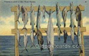 Key West, Florida, USA Fishing Old Vintage Antique Postcard Post Card  Key We...
