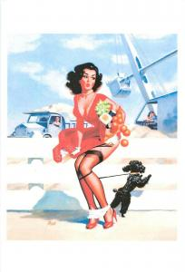 Repro postcard pinup pin up beauty & dog oranges accident site