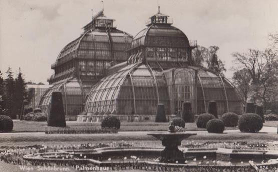Wien Schonbrunn Palmerhaus Real Photo Postcard