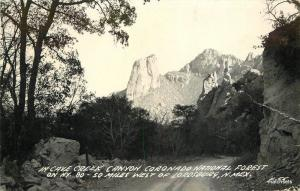 1940s Lordsburg New Mexico Cave Creek Canyon Forest RPPC postcard 8937 Cook