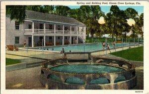 Spring Bathing Pool Green Cove Springs FL Vintage Postcard Standard View Card