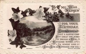 To My Dear Newphew for Your Birthday River Bridge Flowers Postcard