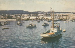 MONTEREY , California , 1940-50s ; Harbor , Fishing Fleet