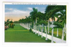 Million Dollar Lovers Lane, Royal Palms, Miami, Florida, unused linen PPC