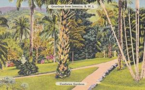Greetings From Jamaica Castleton Gardens