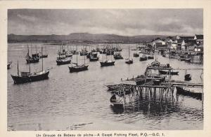 GASPE, Quebec, Canada, 1900-1910's; A Gaspe Fishing Fleet
