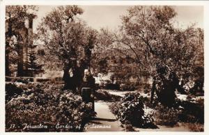 RP, Garden Of Gethsemane, Jerusalem, Israel, 1920-1940s