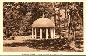 West Virginia White Sulphur Springs The Sulphur Spring Albertype