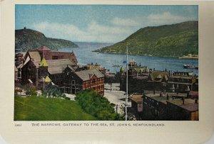 Vintage The Narrows, Gateway to the Sea, St. John's, Newfoundland Postcard