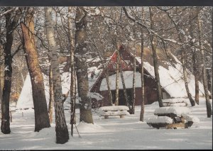 Essex Postcard - Winter in Thorndon Country Park, Brentwood  MB2172