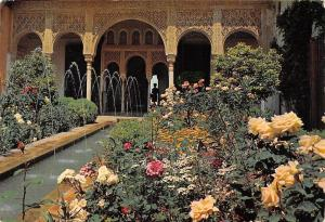 Spain Granada Generalife, Jets Court Flowers, Patio de los Surtidores Fleurs