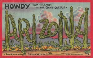 Howdy from the Land of the Giant Cactus 1940s postcard