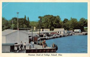 A26/ OHIO Oh Postcard Chrome KELLEY'S ISLAND Lake Erie NEUMAN DOCK People