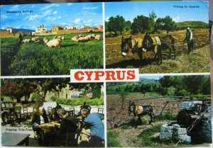 Cyprus Messaoria Village Persian Wheel etc - posted 1971