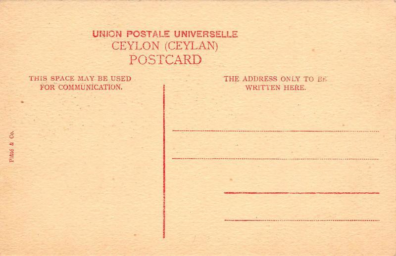 York Street, Colombo, Ceylon, early postcard, unused