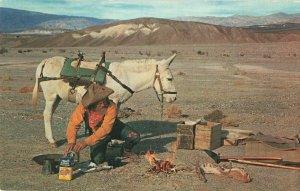 Postcard Prospectors Camp California
