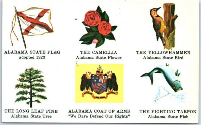 c1960s alabama postcard state flag flower bird tree fish coat of