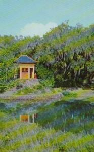 Louisiana Avery Island Jungle Gardens Buddha Temple