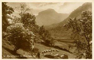 UK - England,  Lakeland, Cumbria. The Home Pastures *RPPC