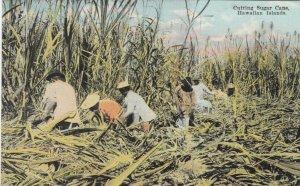 Hawaii , 00-10s ; Cutting Sugar Cane