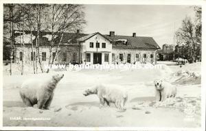 sweden, LULEÅ, Järnvägsstationen, Railway Station, Polar Bears (1954) RPPC