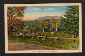 NH Greetings from DOVER NEW HAMPSHIRE Postcard PC Cows