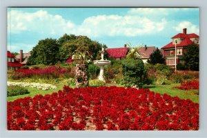 Providence RI-Rhode Island, Flowers At Roger Williams Park, Chrome Postcard