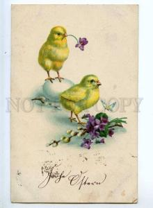 240914 EASTER Lovely CHICKEN w/ VIOLETS Vintage postcard