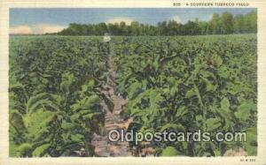 Southern Tobacco Field Farming Postcard Post Card  Southern Tobacco Field