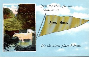 Massachusetts Ayer Just The Place For Your Vacation Pennant Series