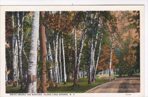 New York Lake George Drive Among The Birches Curteich