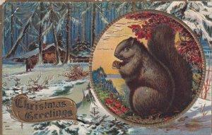 CHRISTMAS, 1900-1910s; Christmas Greetings, Squirrel