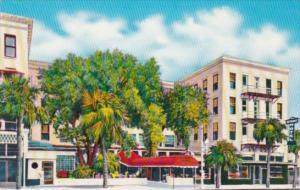 Florida St Petersburg Detroit Hotel