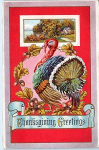 THANKSGIVING GREETING   Postcard  TURKEY & RED Background  c1910s