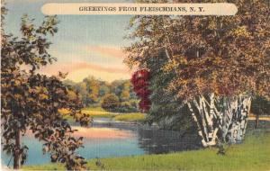 Fleischmans New York Scenic view Greetings Antique Postcard J50484