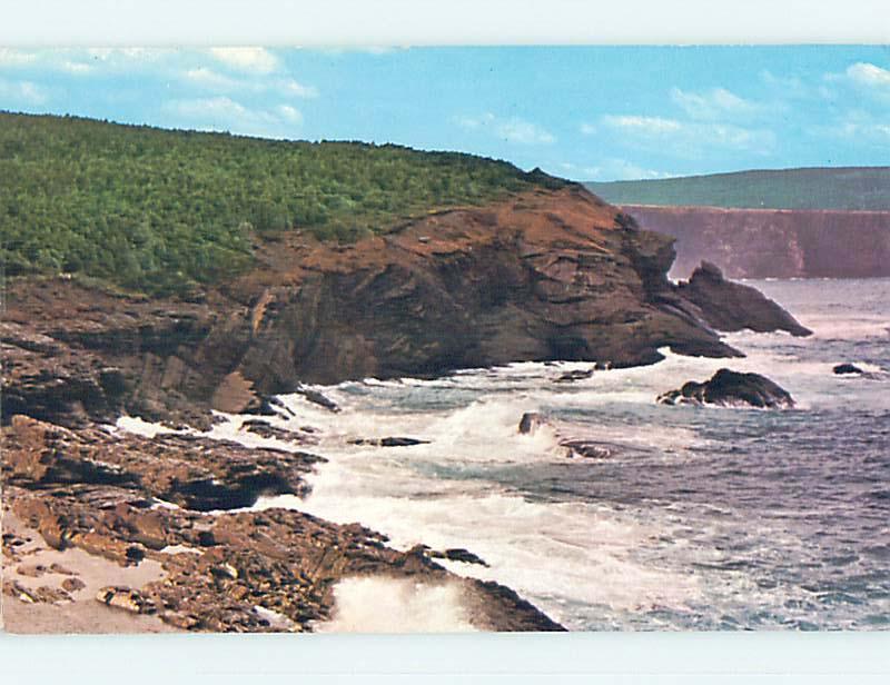 Unused Pre-1980 TOWN VIEW SCENE St. Saint John's Newfoundland NL p8722