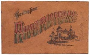 Leather Post Card.  Riverview Park, Chicago, IL, USA. Mailed in 1907