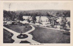 Panorama White Roe Lake New York Albertype