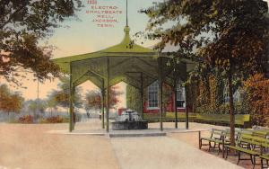 Jackson Tennessee~Lancaster Park Electro-Chalybeate Artesian Well~Gazebo~1910 PC